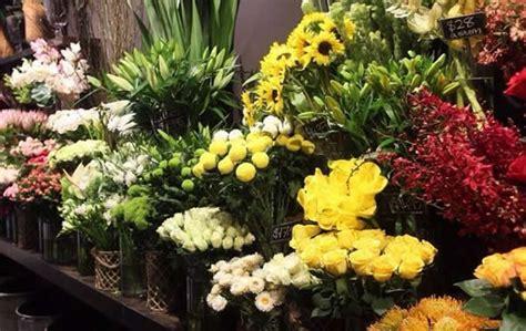 co dei fiori srl lecco catena di negozi di fiori dichiarata fallita i