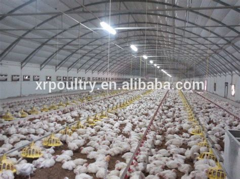 commercial chicken house plans commercial chicken house commercial chicken houselayers cageschicken broiler cages buy