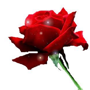 imagenes rosas gif image gallery imagenes animadas de rosas