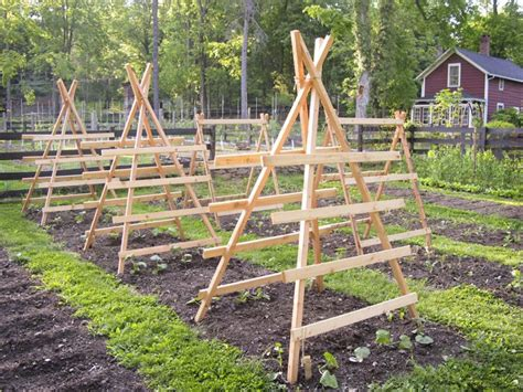 Vegetable Garden Trellis Designs Vegetable Garden Trellis Designs Woodworking Projects
