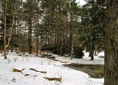 Aldridge Botanical Gardens Snowbound At Aldridge Gardens Deb S Garden Deb S Garden