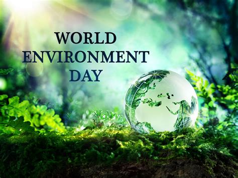 environment day happy world environment day green world plant trees