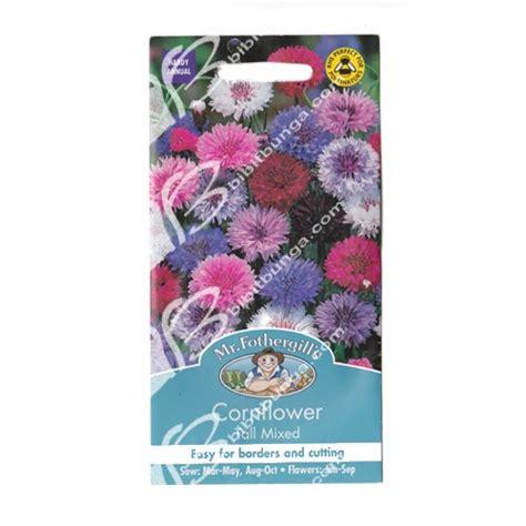 Benih Bunga Mr Fothergills Import Cornflower Blue benih cornflower mixed 500 biji mr fothergills