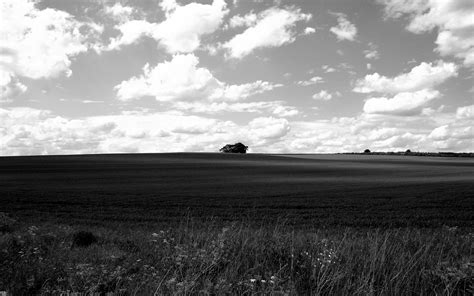 black and white landscape by i dunno desktop wallpaper