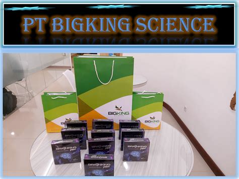 Brainking Plus Asli pt bigking science gt gt brainking plus nutrition