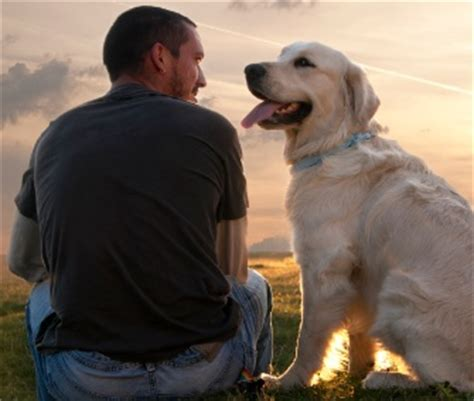 dogs and humans a gaze between and owner releases oxytocin the gazette review