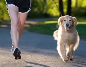 puppies and fitness fitness tips