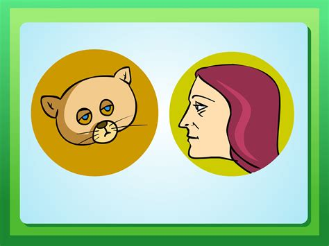 how to get a sick to eat 4 ways to get a sick kitten to eat wikihow