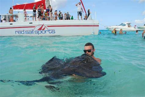 grand cayman sunset catamaran sail tours stingray sandbar and reef sail picture of red sail