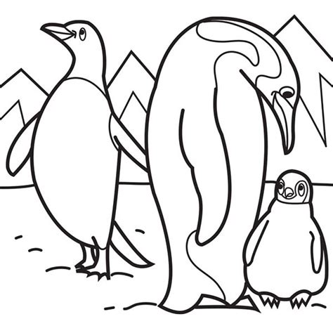 coloring pages arctic animals free coloring pages of arctic animals 585