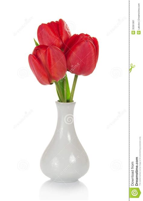 Tulips In Vase by Beautiful Tulips In Vase Stock Image Image 35361961