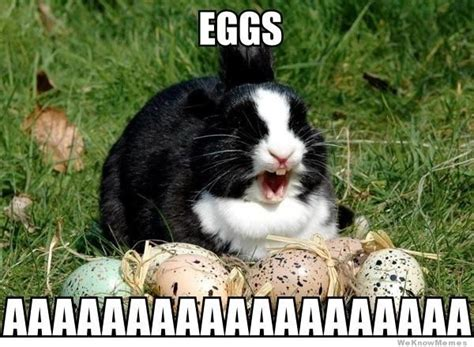 Hilarious Easter Memes - commercial easter anyone else just realize how weird it