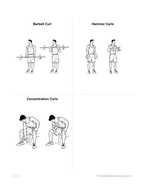 mike chang s actual chest and bicep workout printable