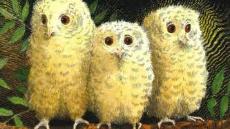 owl babies cbeebies bbc