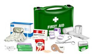 Where to buy a basic first aid kit the outdoor land