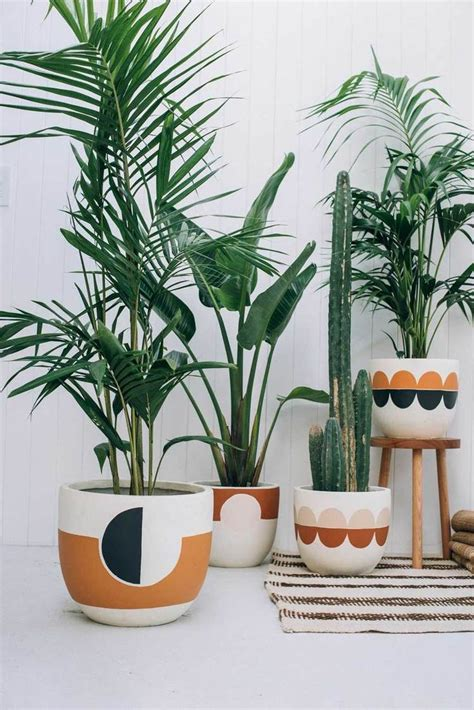plants indoor hanging diy pots images