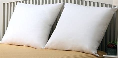 Where To Buy 26 X 26 Pillows by Premium Set Of 2 26 Quot X 26 Quot Pillow
