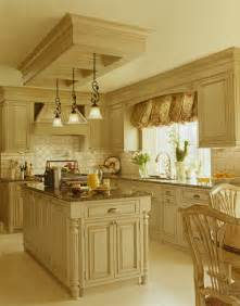 Box Above Kitchen Cabinets Bloomfiel Gourmet Kitchen Traditional Kitchen Detroit By Mainstreet Design Build
