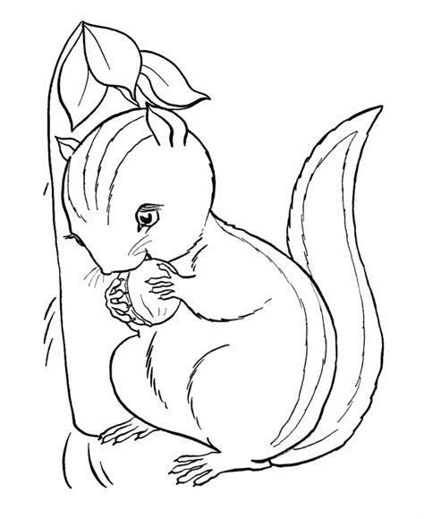 Cute Animal Chipmunk Printable Coloring Sheet Chipmunk Coloring Page