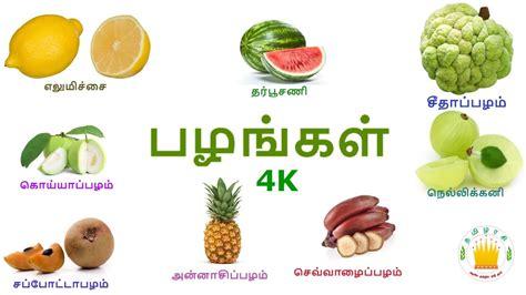 learn tamil fruits  video  kids  children  tamil