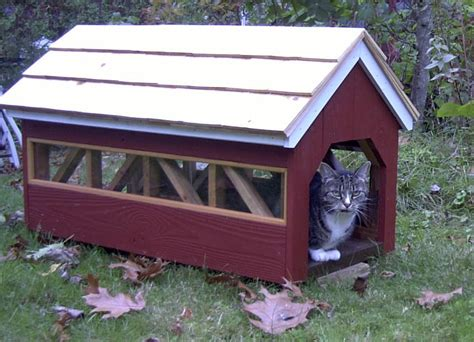 Outdoor Cat House Plans by Outdoor Cat House Outdoor Cat House Bench