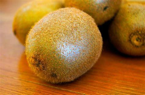 can eat kiwi can you eat kiwi fruit with the skin vegan with kent