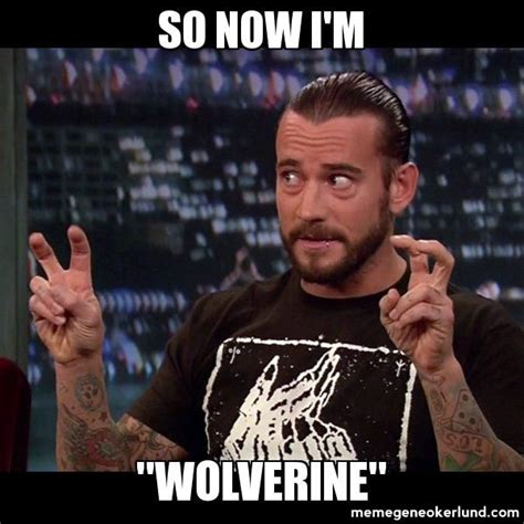 Cm Punk Meme - 92 best images about wwe quotes on pinterest the rock