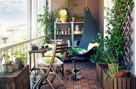 piante in terrazzo come concimare le piante in terrazzo la casa in ordine