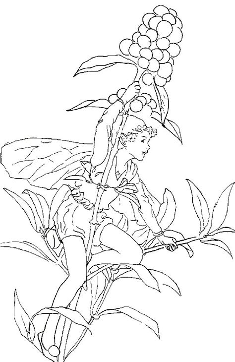 Kids-n-fun.com | 40 coloring pages of fairies