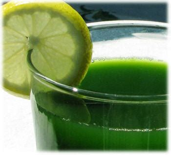 How Does Chlorophyll Help Detox Your by How To Raise Your Vibration Apple Chlorophyll Water Detox