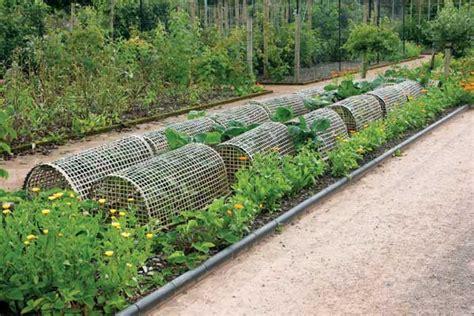 cheap garden beds organic gardening mother