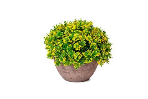 jual mendarik kuning vas pot bunga artificial artifisial