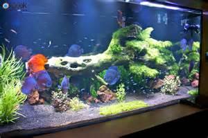 aquarium led le eclairage d aquarium d eau douce plant 233 orphek