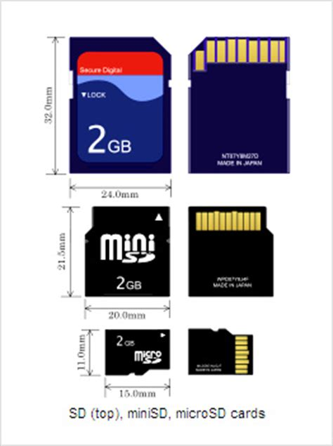 compact flash (cf), secure digital (sd) and sdhc/sdxc