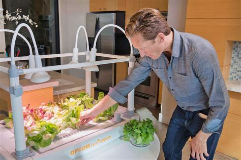 hydroponic garden inhabitat green design innovation