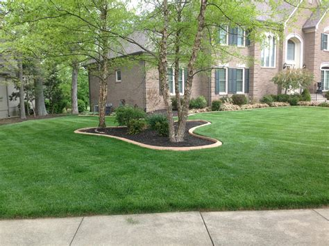browning landscaping in louisville ky tree service