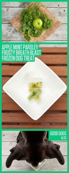frozen bad hot dogs 1000 images about frozen dog treats on pinterest frozen