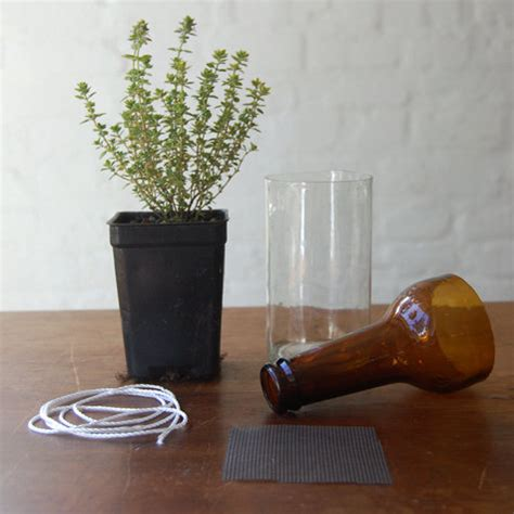 diy self watering herb garden better housekeeper all things cleaning gardening cooking and organizing