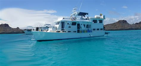 New Flamingo by M Y New Flamingo Yacht Budget Galapagos Cruise