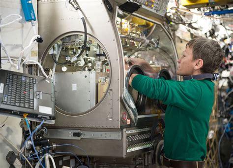 nasa bed experiment nasa international space station on orbit status 19