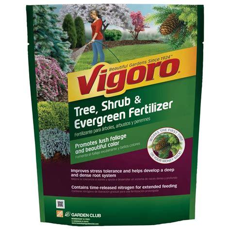 vigoro tree shrub and evergreen 3 5 lb plant food 124260