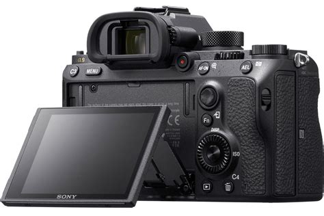 sony frame mirrorless sony a9 frame mirrorless