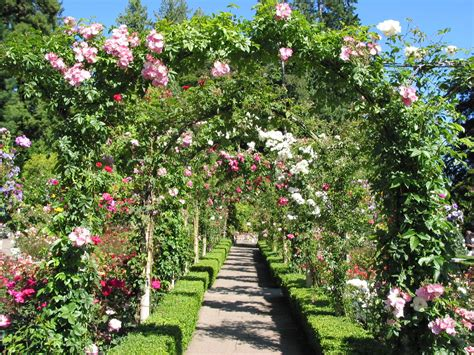 imagenes de jardines llenos de rosas manualidades varias fondos de paisajes