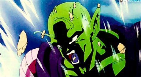 piccolo gif find & share on giphy
