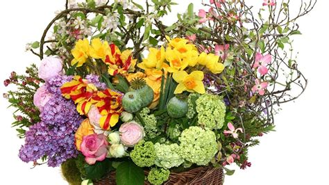 Flower Garden Los Angeles A Flower Shop Guide To Los Angeles For Any Occasion
