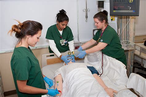 Nursing School Miami by School Of Nursing And Health Studies I Of Miami