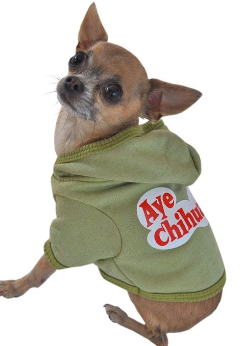 chihuahua puppy clothes 25 best ideas about chihuahua clothes on puppy sweaters yorkie clothes