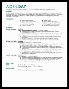 Top 10 Best Resume Formats Hybrid Resume Example Top 10 Best Resume Formats Top 10