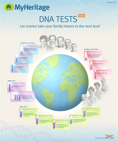 dna testing new myheritage dna tests for genealogy 171 myheritage