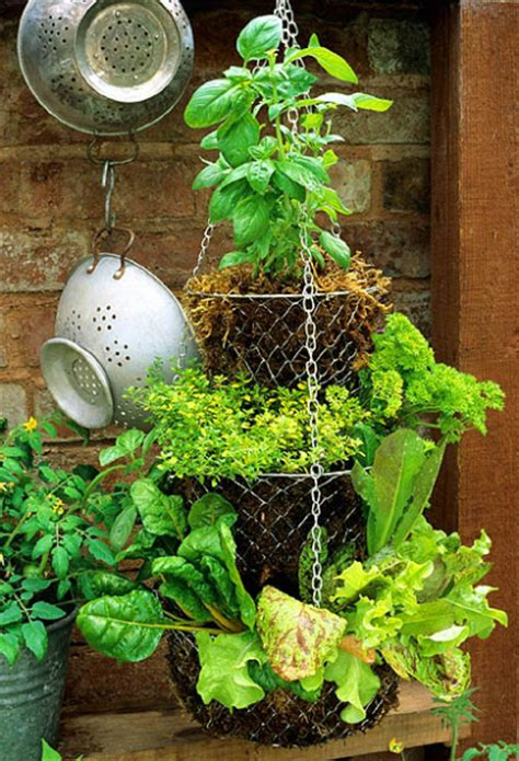 diy hanging herb garden creative diy herb garden ideas